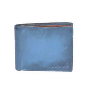 Men Blue Leather Solid Two Fold Wallet